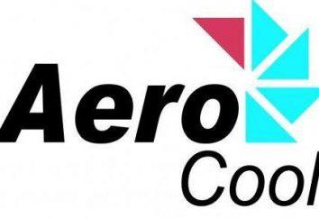 Obudowa Aerocool: przegląd, opis modeli