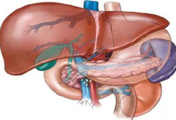 colangite esclerosante primária: Sintomas, Diagnóstico e Tratamento