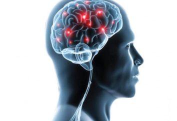 La maggior parte dei neurologi Mosca: il rating e recensioni