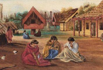 La società tradizionale: Definizione. Caratteristiche società tradizionale