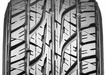 O Opony Dunlop Grandtrek AT3 i innych off-road
