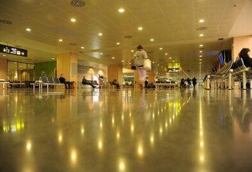 Aeroporto Ibiza: porta l'aria dell'isola