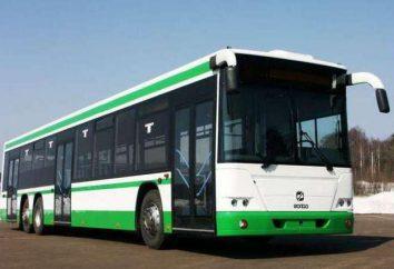 Bus Golaz 5251, 6228: especificações técnicas e fotos