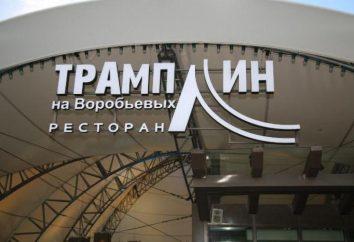 """ristorante """"Trampolino"""" sul Passero, Mosca: rivedere il menu e recensioni"""