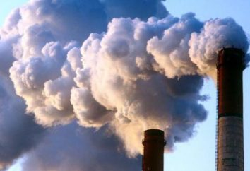Les problèmes environnementaux du territoire de Krasnoïarsk: description et solutions