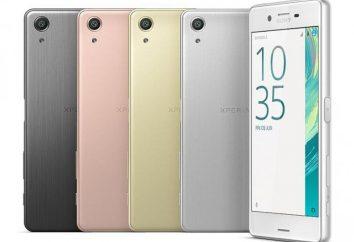 Desempenho Sony Xperia X: Visão geral e características do modelo
