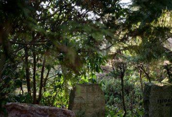 Cmentarz Serafimovskoe – pamięć o przeszłości