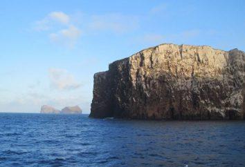Bounty Islands – mit czy rzeczywistość?