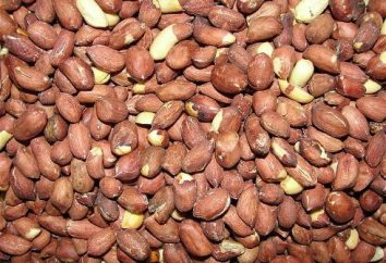 Por que o Senegal é chamado de república de amendoim: um pouco de história e economia