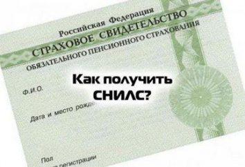 Onde e como obter SNILS uma criança em Moscou?