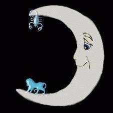 Kompatibilität Horoskop: Lions und Scorpions