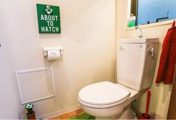 Luke sanitarnych z tworzyw sztucznych: wymiary i wybór opcji