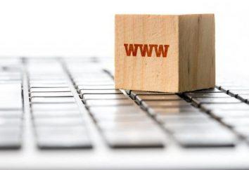 Wie man einen Domain-Namen für Ihre Website wählen?