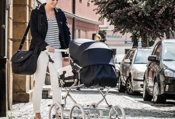 """Wózki elewacyjne """"Hesba"""" – kombinacja stylu, komfortu legendarnej jakości niemieckiej"""