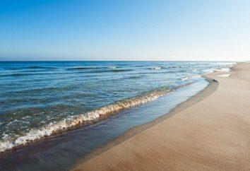 Mar Báltico: salinidad, profundidad, ubicación, descripción,