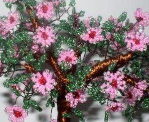 Árvores de contas – esquemas para ajudar!