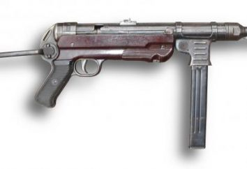 Małe ramiona Wehrmacht. Małe ramiona Wehrmachtu w czasie II wojny światowej. Broń strzelecka Niemcy