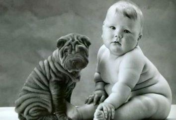 E se a gordura do bebê? O problema do excesso de peso em crianças está associado com o que?