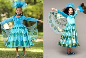 Anzug Firebird für Mädchen mit ihren Händen: Muster, Materialien, Anleitungen,