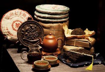 Tea aristocrática Pu-erh: contra-indicações e propriedades úteis