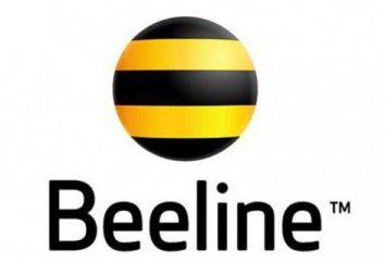 """Wie die Rate auf """"Beeline"""" zu verlängern?"""