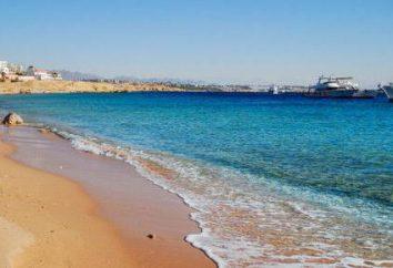 "Egitto, Sharm El Sheikh Hotel ""Otium Amphora"": foto e recensioni"