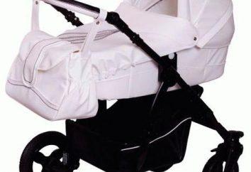 Wózki Lonex: opis, rodzaje, opinie