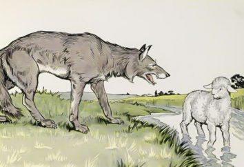 """""""A wilki są karmione i owce nienaruszone"""": etymologia i znaczenie przysłów"""
