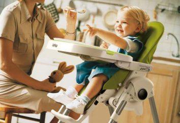 Cadeira de Peg-Perego Prima Pappa Zero-3: Teste, Preço