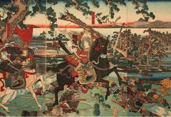 Samurai Armor: nome, descrição, designação. espada samurai