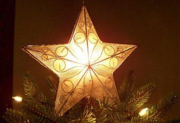 Was sollte die Spitze des Baumes sein? Wir schmücken die Oberseite des Weihnachtsbaumes durch alle Regeln!