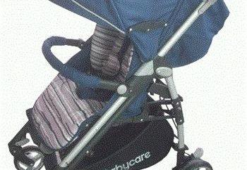 Baby Care GT4: caractéristiques et description