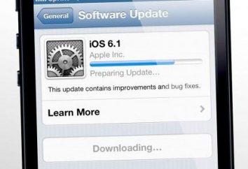 Przydatne wskazówki, w jaki sposób zaktualizować iOS na iPadzie. Jak zaktualizować iOS za pośrednictwem iTunes