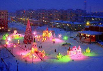 Die beste Eis der Stadt: Liste, Bewertung, Beschreibung und Kundenbewertungen