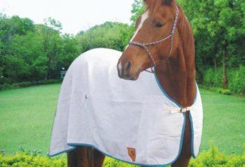 Decke für Pferde: nähen ihre eigenen Hände