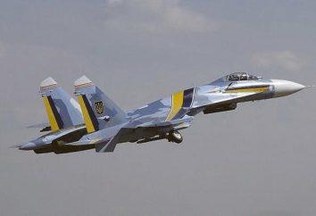 Sknilovskaya tragédie est arrivé au cours Airshow