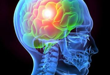 Neurochirurgia – Co to jest?