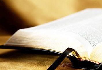 I libri sacri delle religioni del mondo: la Torah, la Bibbia, il Corano