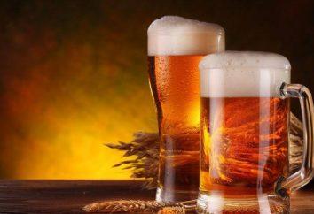 birra in polvere. tecnologia di produzione della birra. Come distinguere dalla birra polvere naturale?