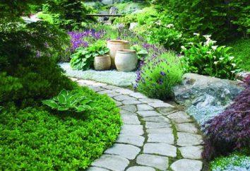 Jak zrobić ścieżkę w ogrodzie z własnymi rękami?