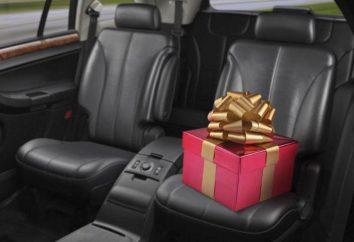 Presente en el coche hombre: las cosas necesarias y accesorios divertidos para el