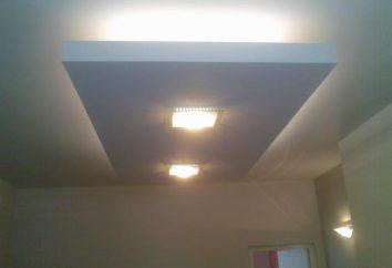 Tetos de placas de revestimento com luz de fundo: onde usar e como escolher?