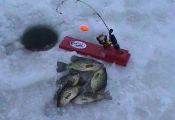 Wędkowanie na zherlitsy. Rodzaje zherlitsy dla rybołóstwa zimnego