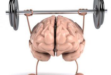 Desenvolvimento da inteligência e da memória. Exercícios para o desenvolvimento da memória, inteligência e atenção em crianças