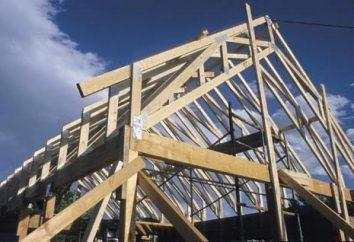 Więźby dachowej – ważnym elementem w konstrukcji dachu