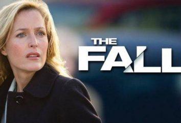 série TV « Crash »: critiques, l'intrigue, des acteurs et des rôles. Combien de saisons dans la série « Crash »?