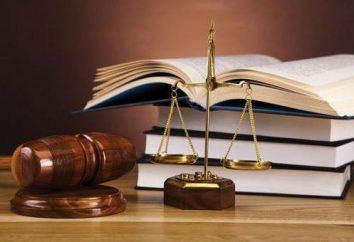 moderna giurisprudenza. Giurisprudenza e formazione giuridica
