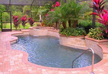 Jak wybrać drabiny do basenu?