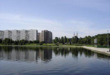 Obiekty wodne Moskwy (rzeki, stawy): nazwy, opis