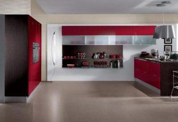 Die Wandplatte in die Küche. Installieren von Wandplatten in der Küche mit den Händen